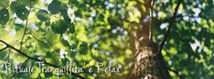 Vivere l'Oriente: Rituale Tranquillità e Relax